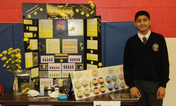 Grade 6 to 8 Science Fair - Town Centre Private School Markham